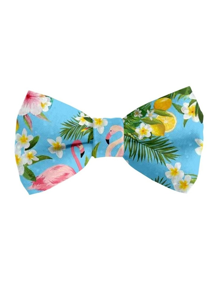 Flamingo Tropical Cat Safety Collar & Bowtie image 2