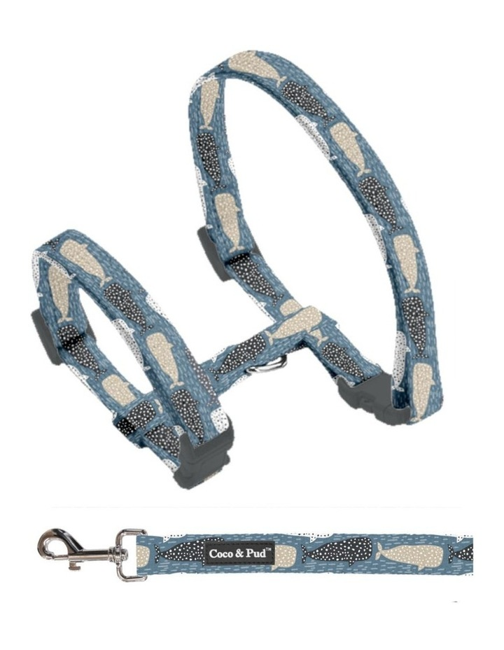 Whale of a Time Cat Harness & Lead image 2