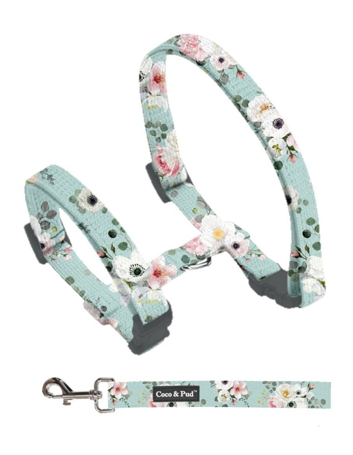 Coco & Pud French Azure Cat Harness & Lead image 2