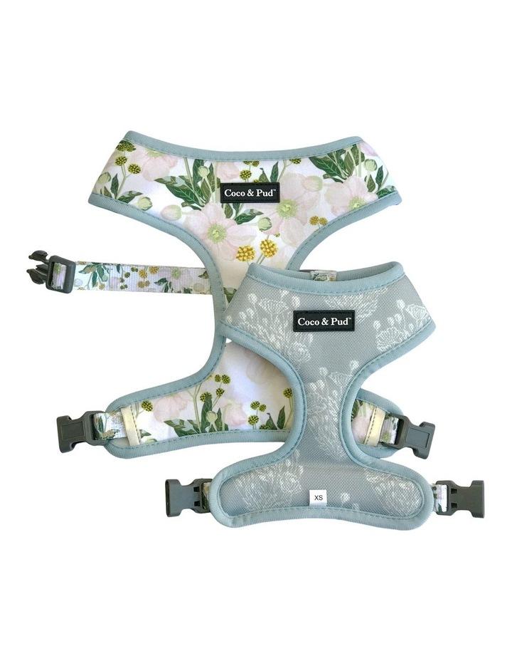 Windflower Reversible Dog Harness image 1