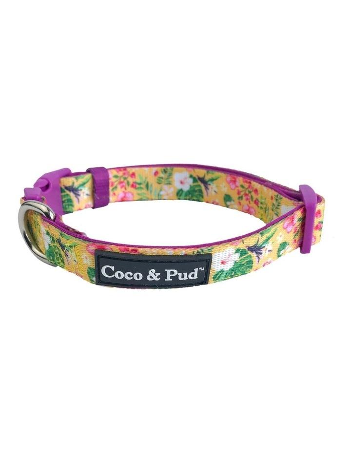 Summer Sunrise Dog Collar & Bow Tie image 1