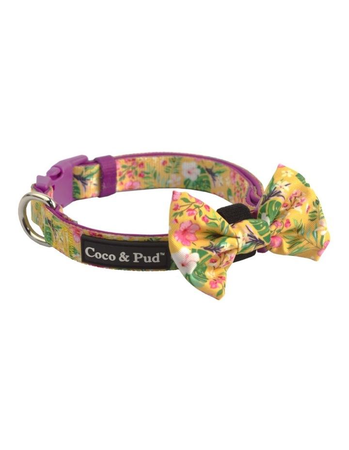 Summer Sunrise Dog Collar & Bow Tie image 2