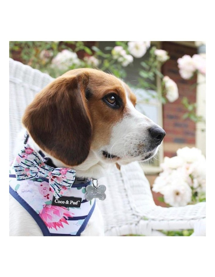Floral Blooms Dog Collar & Bow Tie image 3