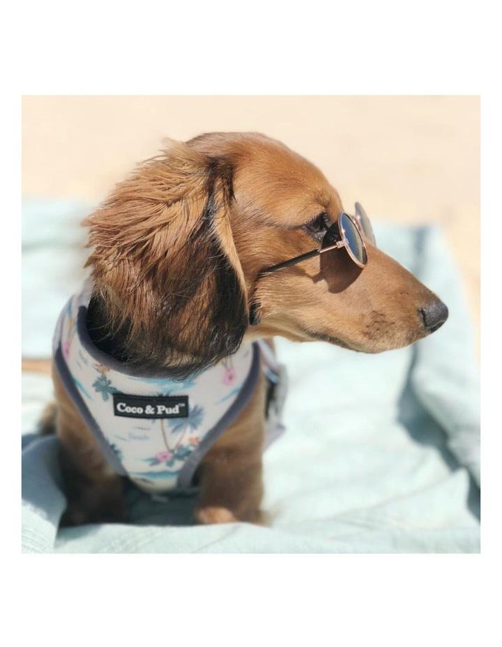 Camo Hibiscus Dog Harness image 4