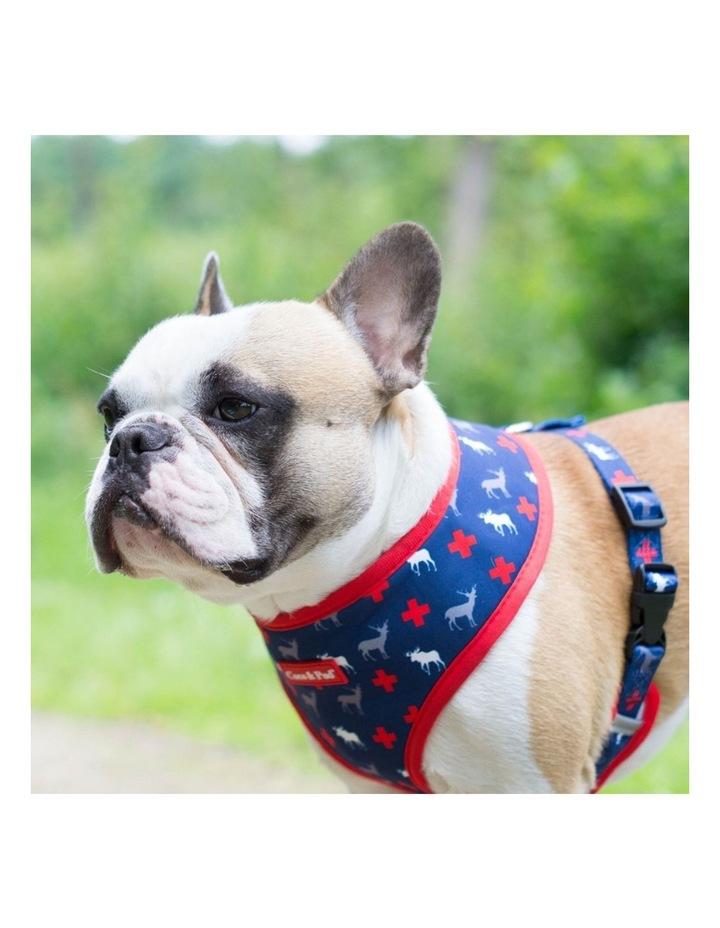 Adventure Reversible Dog Harness image 4