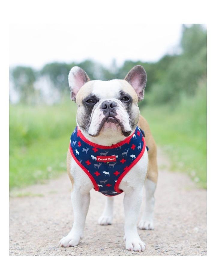 Adventure Dog Bandana image 5