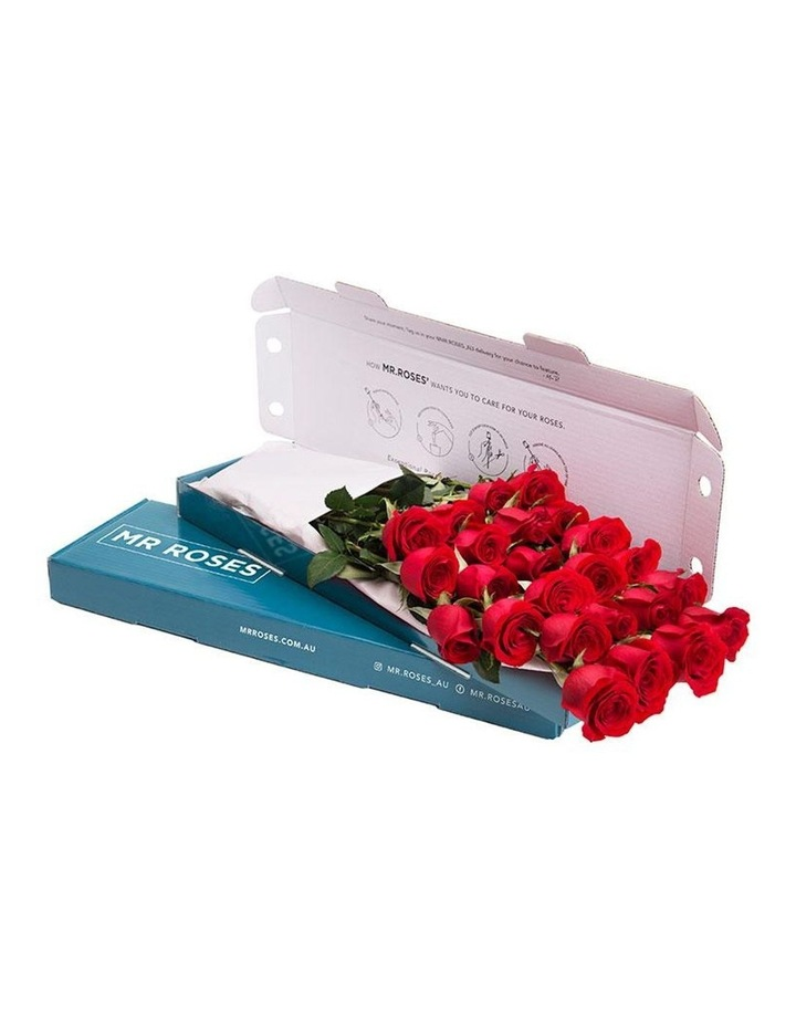 Sublime Red Roses Gift Box 20 Charming stems image 1