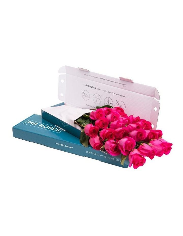 Sublime Bright Pink Roses Gift Box 20 Charming stems image 1