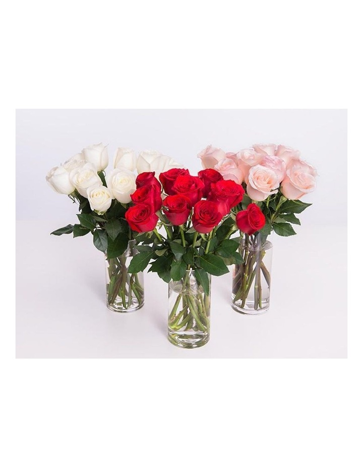 Red Roses Gift box 12 Classic stems image 3