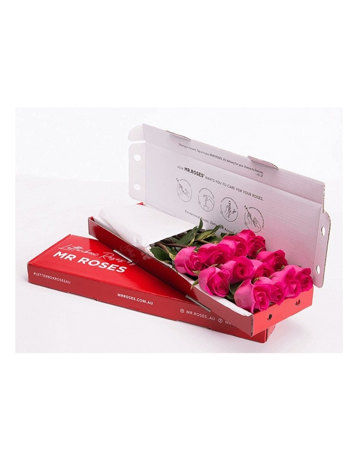 Bright Pink Roses Gift Box 12 Classic stems image 1