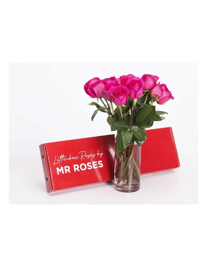 Bright Pink Roses Gift Box 12 Classic stems image 2