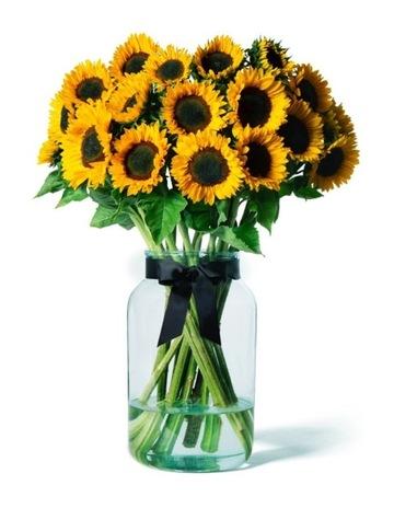 Artificial Flowers Botanicals Bouquets Indoor Plants More Myer