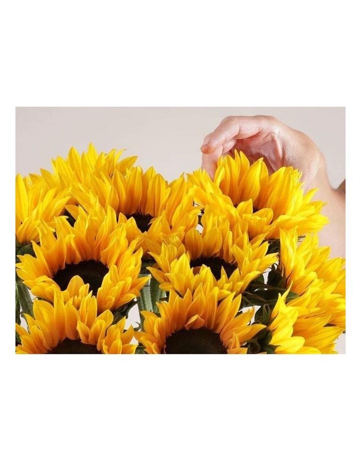 Sunflowers image 2