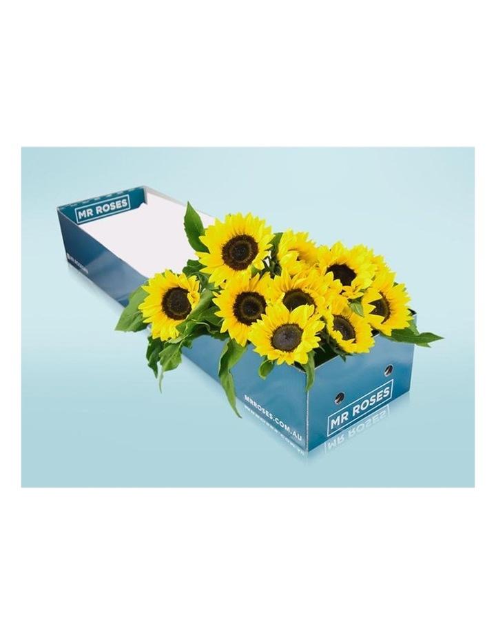 Sunflowers image 3