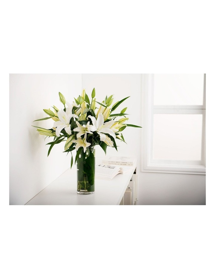 White Lilies image 1