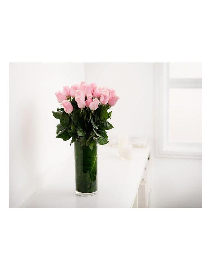12 Fresh Long Pink Roses image 2