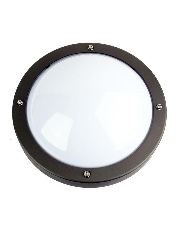 Primo Exterior Bulkhead Light Graphite image 1