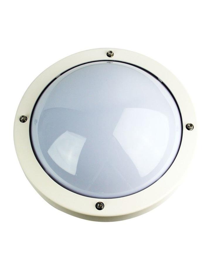 Primo Outdoor White Round Bulkhead Light image 1