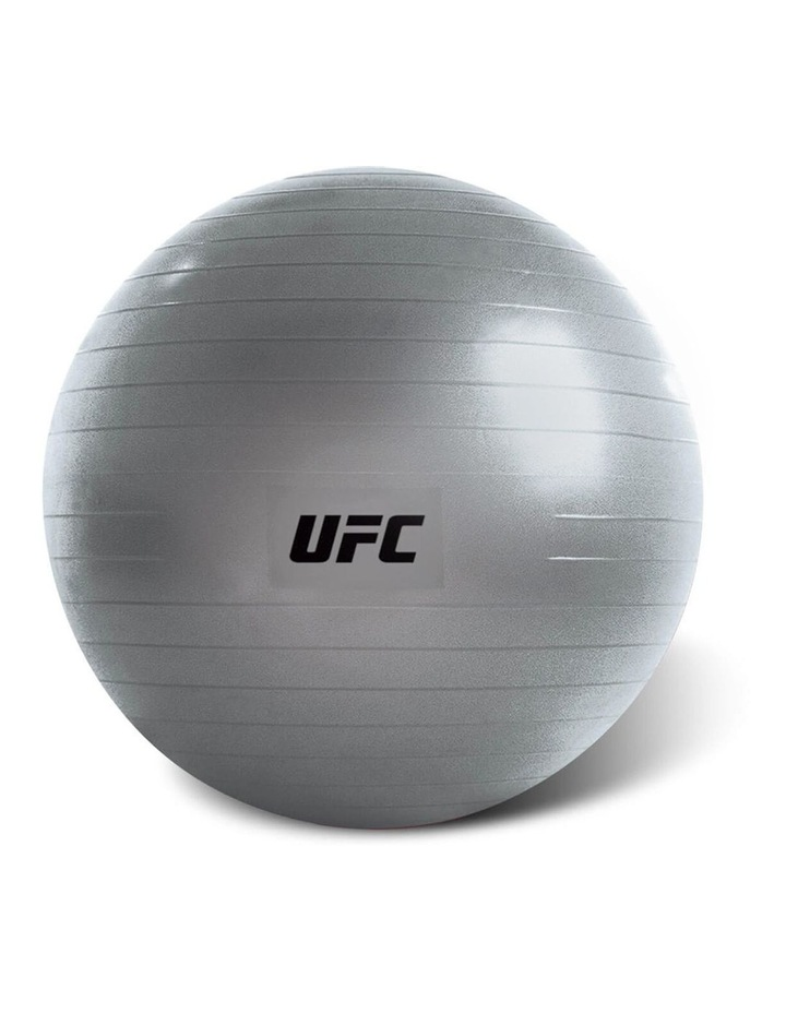 Exercise Fitness Ball Fitball 55cm Grey image 1