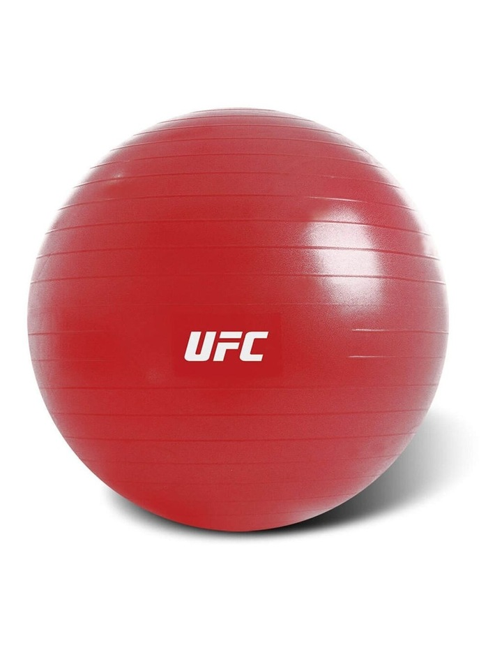 Exercise Fitness Fitball 65cm Red image 1