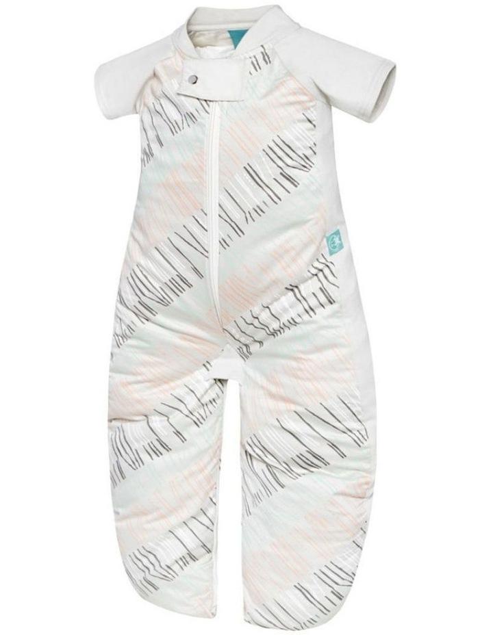 Sleep Suit Bag Size 2-12 Months TOG: 1 - Sticks image 5
