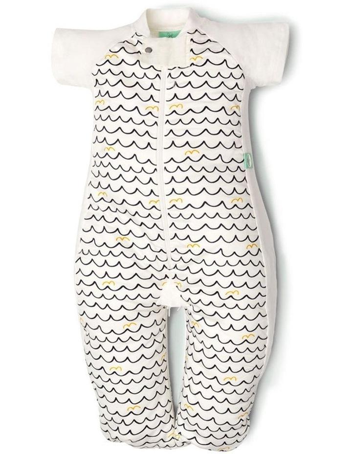 Sleep Suit Bag: 2 -12 Months - 1.0 TOG - Waves image 1