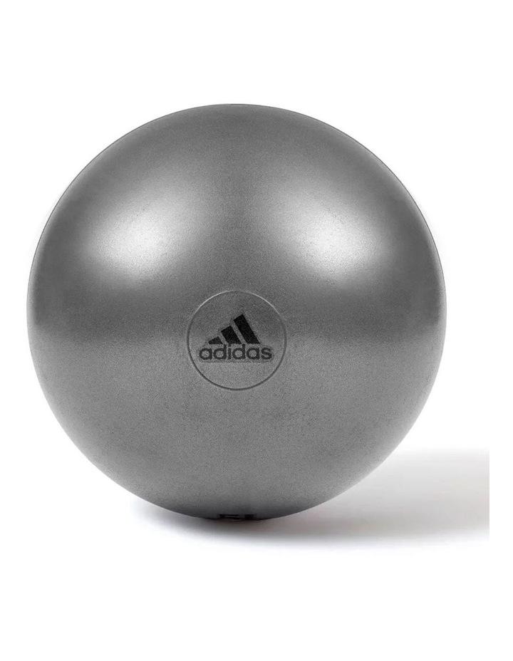 Gym Ball - 55cm - Grey image 1
