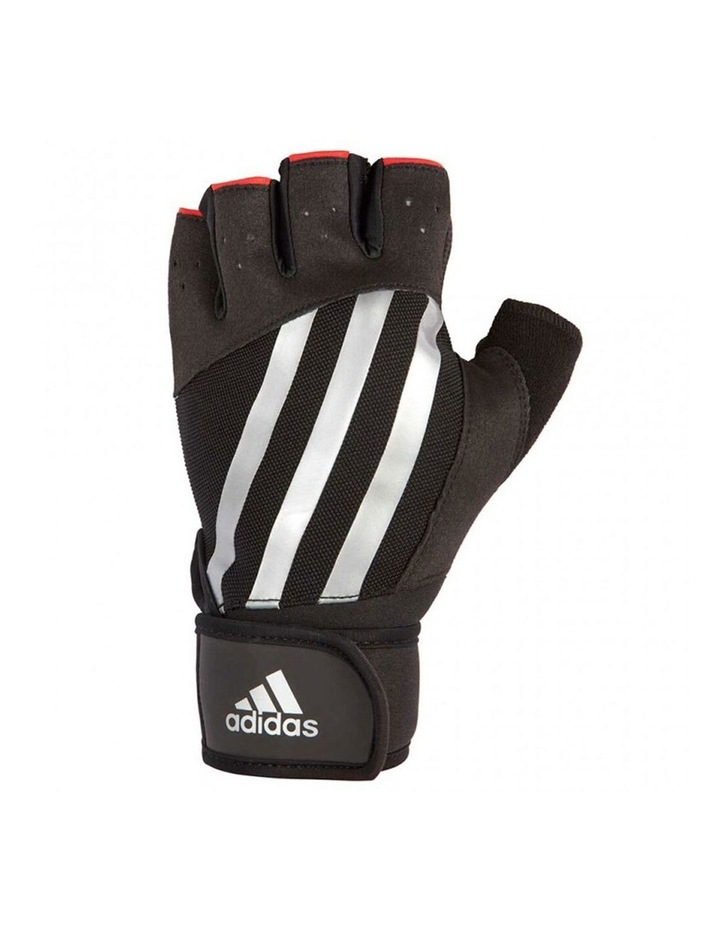 Elite Training Gloves - Stripe - XL image 1