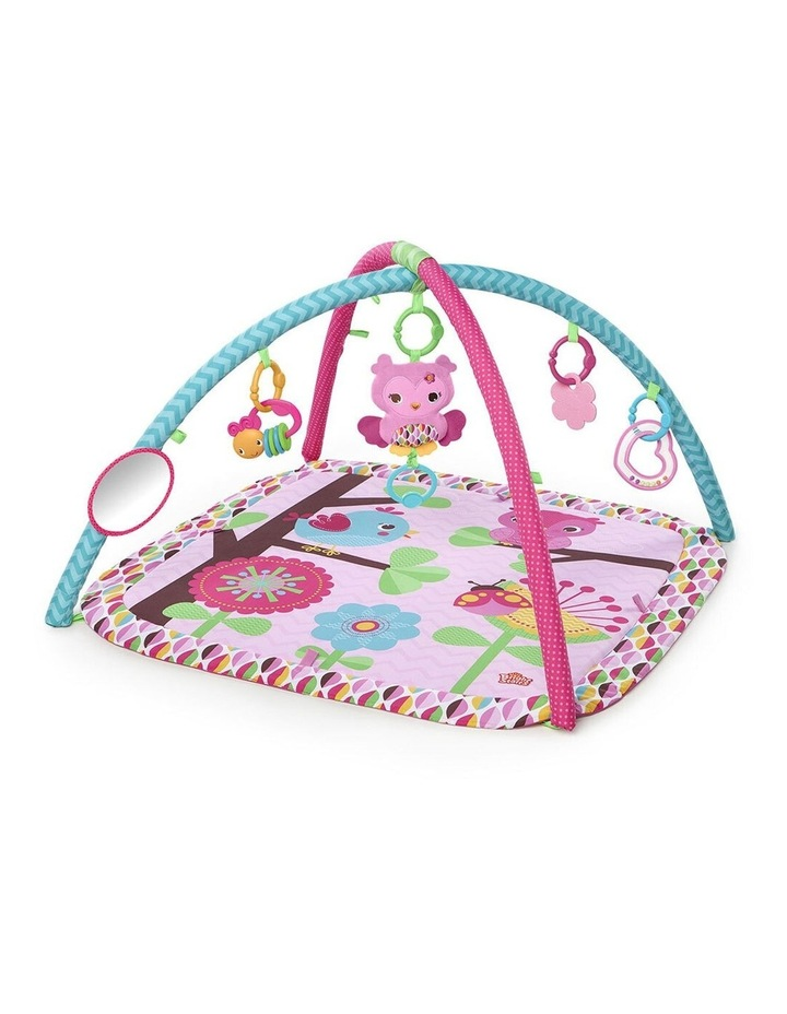 Charming Chirps Activity Gym/Play Mat Baby/Infant with Mirror/Toy 0  image 1