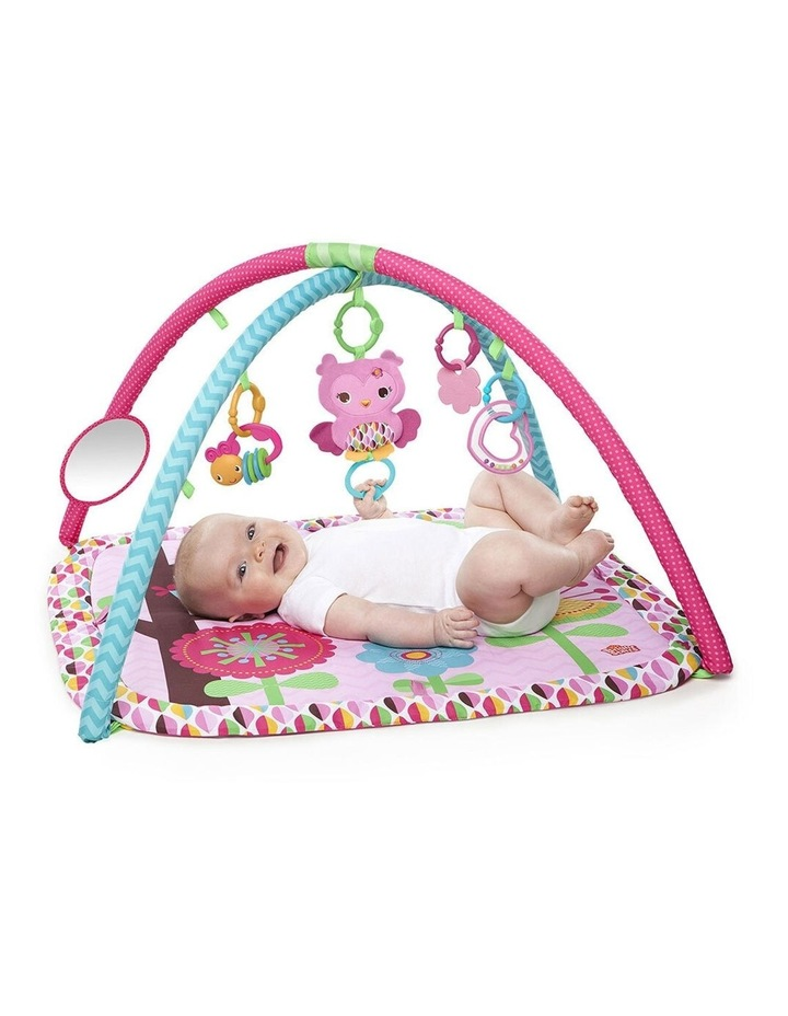 Charming Chirps Activity Gym/Play Mat Baby/Infant with Mirror/Toy 0  image 2