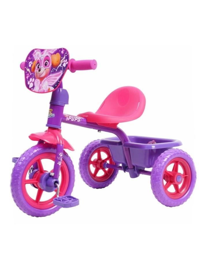 Paw Patrol Skye Pedal Bike Trike Ride On Toy Bucket Kids/Toddler 3y  Purple/Pink image 1