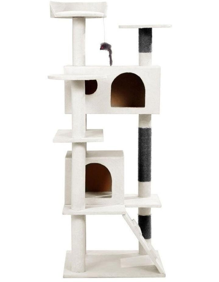 134cm x 50cm Catsby Hamilton Cat/Kitten/Pets House Scratching Post image 2