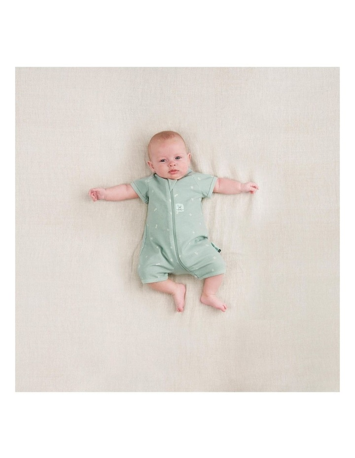ErgoPouch Layers Short Sleeve Baby Organic Cotton TOG 0.2 Size 0-3 Months Sage image 5