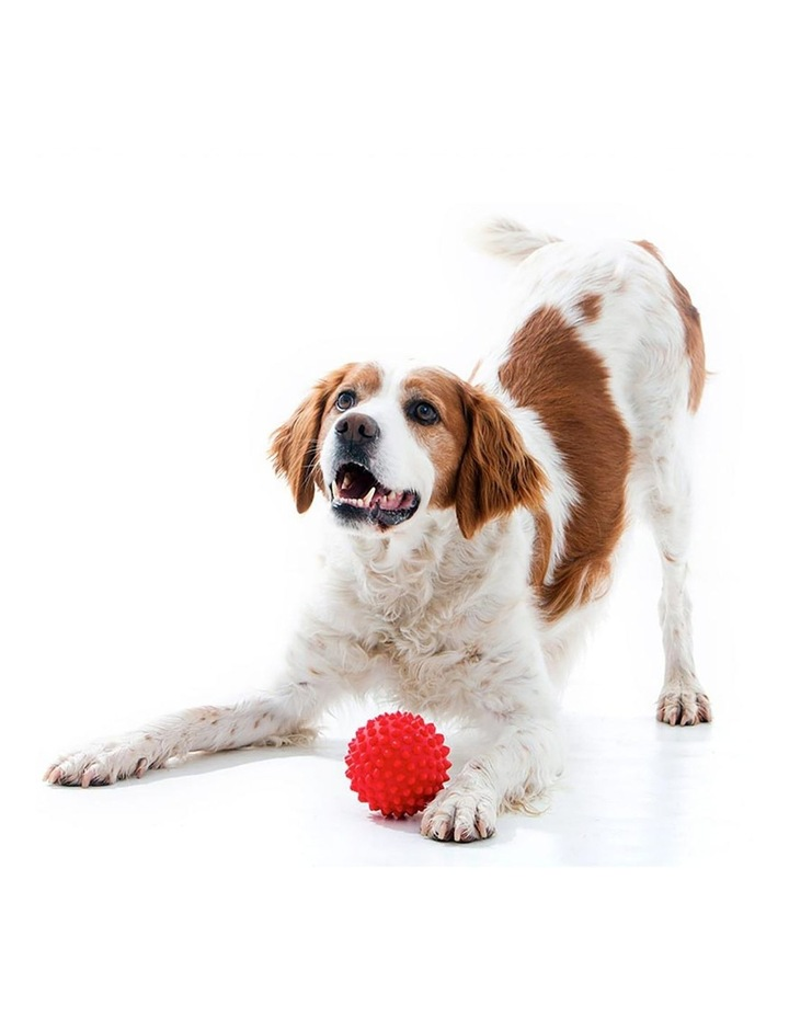 Catch Spike Ball Throw/Fetch Tough Hard Floating Toy for Dogs Red 9cm image 2