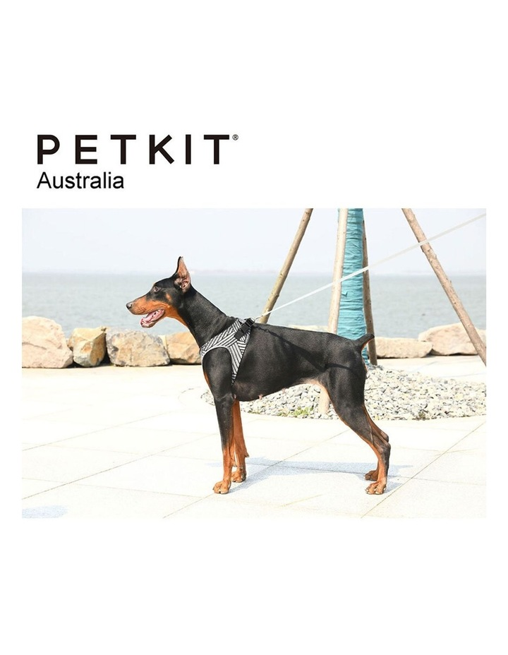 Air Fly Adjustable Dog Soft Mesh Harness Outdoor Pet Travel Vest Medium image 4