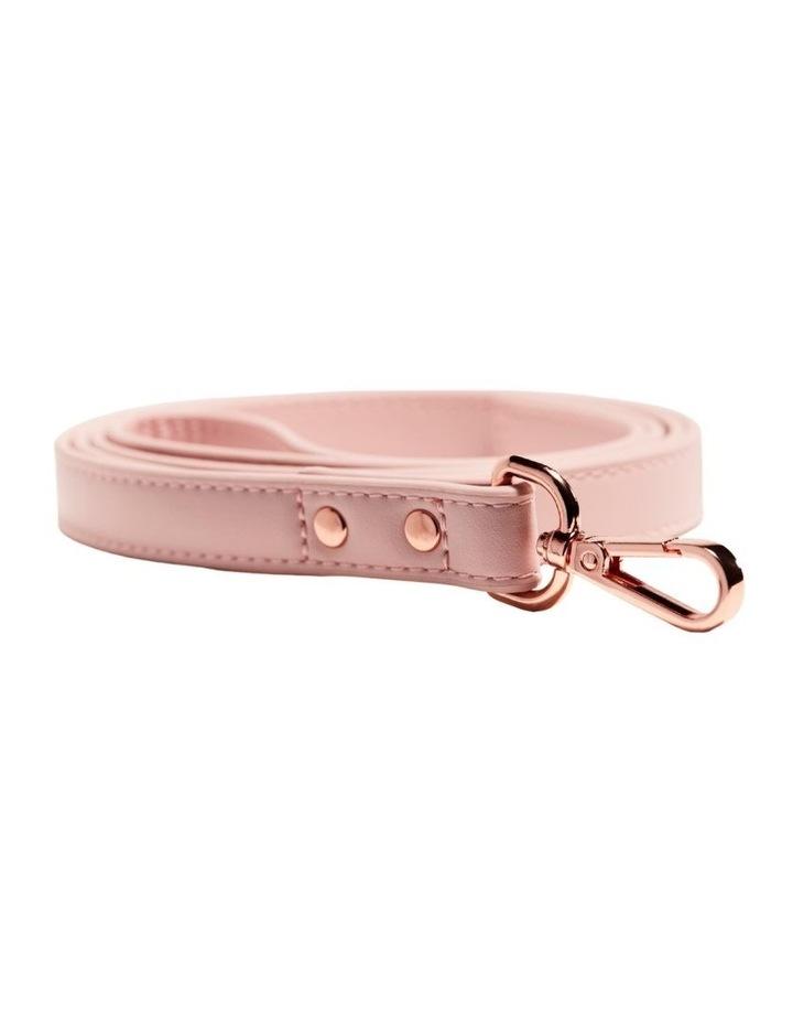LEAD - Pale Pink image 1