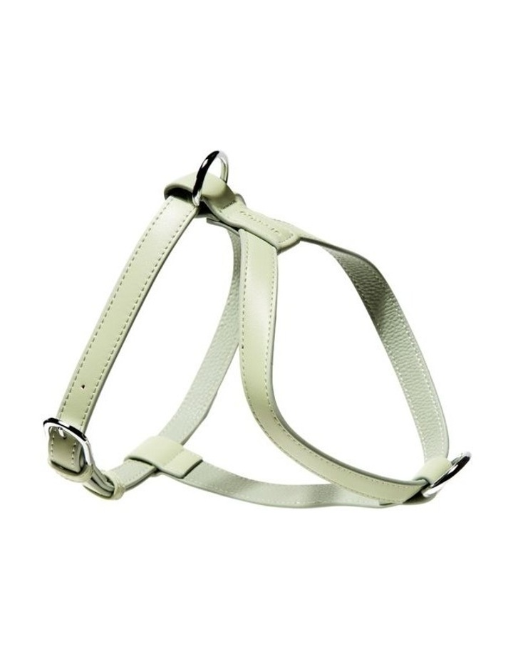 Harness - Sage image 1