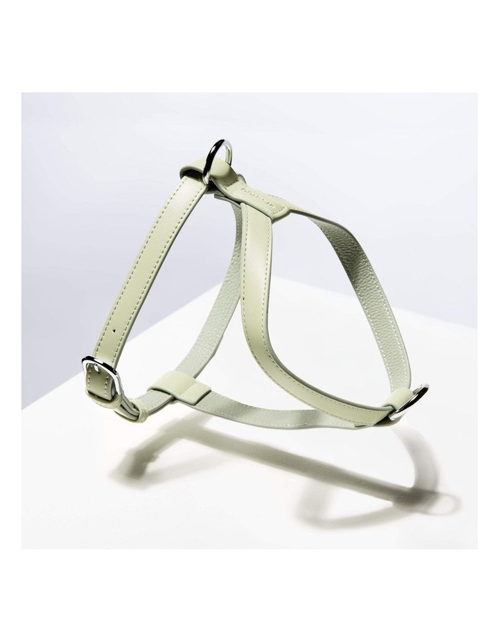Harness - Sage image 2