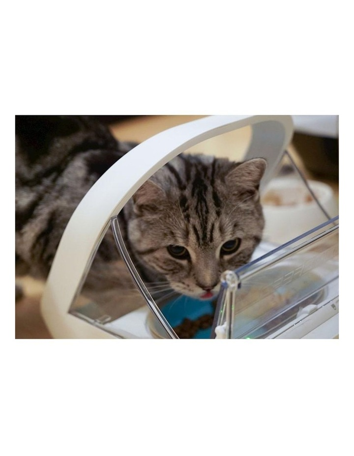 Surefeed Microchip Pet Feeder image 3