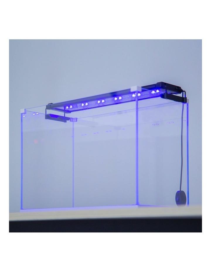 Aquarium Blue White LED - 11W 50-70cm image 3