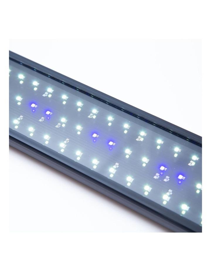Aquarium Blue White LED - 33W 120-140cm image 4